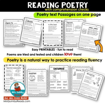 Reading for Meaning - Comprehension Checks - Poetry - Literacy Instruction