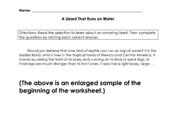 Reading in Science: Lizard Info Text + 7 Multiple Choice Comprehension Questions