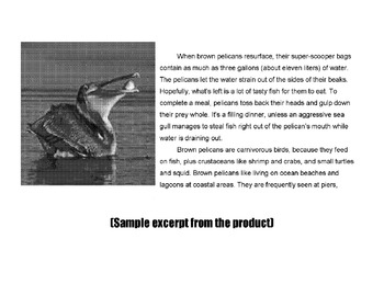 Reading in Science PELICAN DIVE 12 Multiple Choice Vocabulary + Comprehenison Qs