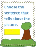 Choose the sentence that tells about the picture.