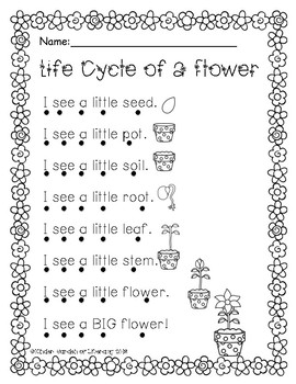 Reading with Dots-Plant Life Cycle