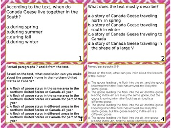 Readworks Wild Calls in the Springtime Sky Task Cards