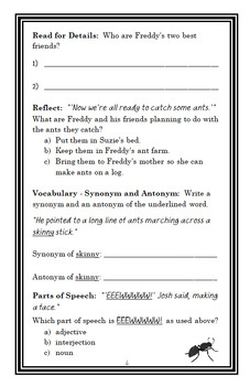 Ready, Freddy! Gamer Boy (Abby Klein) Novel Study / Comprehension (24 pages)