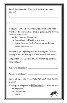Ready, Freddy! Gamer Boy (Abby Klein) Novel Study / Comprehension (24 pages)