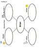 Ready Gen 5th Grade - Differentiation lessons 15 Module A