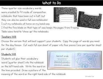 ReadyGEN Kindergarten Unit 1 Vocabulary Interactive Notebook Bundle