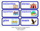 ReadyGen 2016 Lesson Plans Unit 4A - Word Wall Cards - EDITABLE -Kindergarten