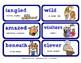 ReadyGen 2016 Lesson Plans Unit 5A - Word Wall Cards - EDI