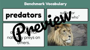 ReadyGen Aligned Google Slide Lessons - 4th Grade Module B