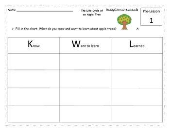 First Grade ReadyGen Unit 4 Module B Reading Analysis Activities