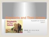 ReadyGen First Grade Unit 1 Module B Lesson 4 Elephants an
