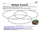 ReadyGen GRAPHIC ORGANIZERS Unit 4 Module B - Grade 5