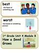 ReadyGen How a Seed Grows Vocabulary 1st Grade Unit 4 Module B