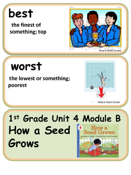 ReadyGen How a Seed Grows Vocabulary 1st Grade Unit 4 Module B