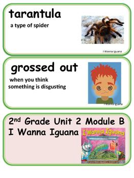 ReadyGen I Wanna Iguana Vocabulary 2nd Grade Unit 2 Module B