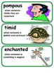 ReadyGen Pedro's Journal Vocabulary 5th Grade Unit 4 Module A