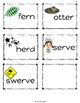 ReadyGen (Ready Gen) Phonics and Sight Word Practice for Unit 5