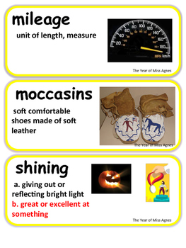 ReadyGen The Year of Miss Agnes Vocabulary 3rd grade Unit 2 Module A