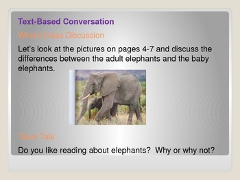 ReadyGen First Grade Unit 1 Module B Lesson 1 Elephants and Their Calves