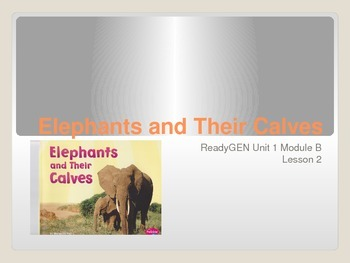 ReadyGen First Grade Unit 1 Module B Lesson 2 Elephants and Their Calves