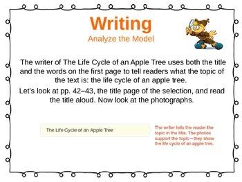 ReadyGen Unit 4 Module B - EDITABLE PowerPoint Lessons - Grade 1