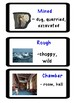 "ReadyGen ""Vocabulary to Unlock Text"" Vocab. Cards - UNIT 2"