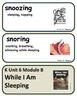 ReadyGen While I Am Sleeping Vocabulary Unit 6 Module B