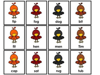 Real And Nonsense Word Sort Birds