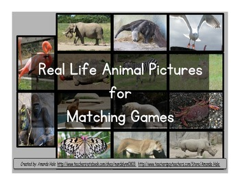 Real Animal Photograph Matching Set s 1 & 2