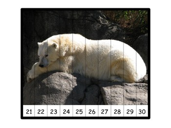 Real Animal Photos - 15 Math Number Puzzles