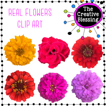 Real Flower Clip Art