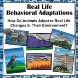 Animal Adaptations PowerPoint + Printable Worksheet Real Life Scenarios