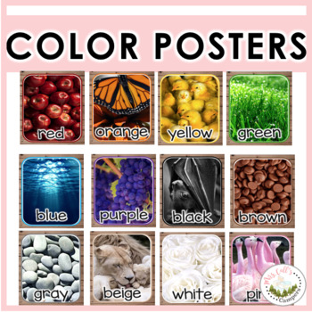 Real Life Color Posters (English/Spanish) FREEBIE