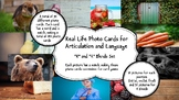 Real Life Photo Cards - R and R Blends for Articulation an
