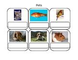 Real Life Vocabulary-Pets