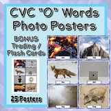 "CVC Words ""O"" Vocabulary Posters & Cards"