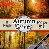 Autumn/ Fall Digital Paper (Autumn Scenes)
