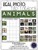 Real Photograph File Folders: Animals