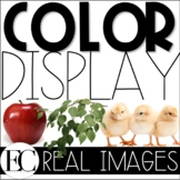 Real Picture Color Classroom Display