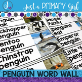 Real Pictures Penguin Word Wall