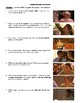 Real Women Have Curves Film (2002) Study Guide Movie Packet