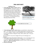 Real and Creative Tree Drawing Assignment