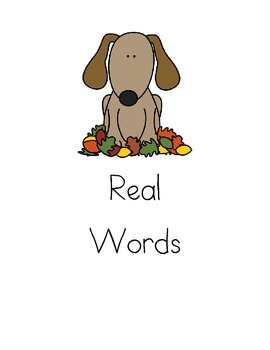 Real and Nonsense Words with Digraphs!