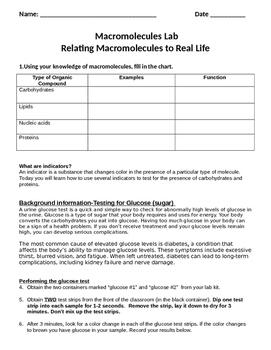 Real-life Macromolecule Lab Activity