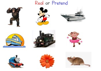 Real or Pretend?