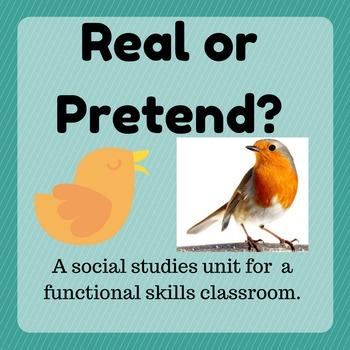 Real or Pretend Unit