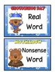 Real vs Nonsense  Groundhog Day