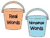 Real vs Nonsense Word Sort