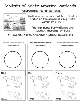 Realia Photo Animal Fact Flash Cards - North American Wetlands