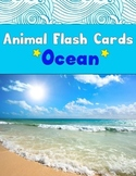 Realia Photo Animal Flash Cards - Ocean